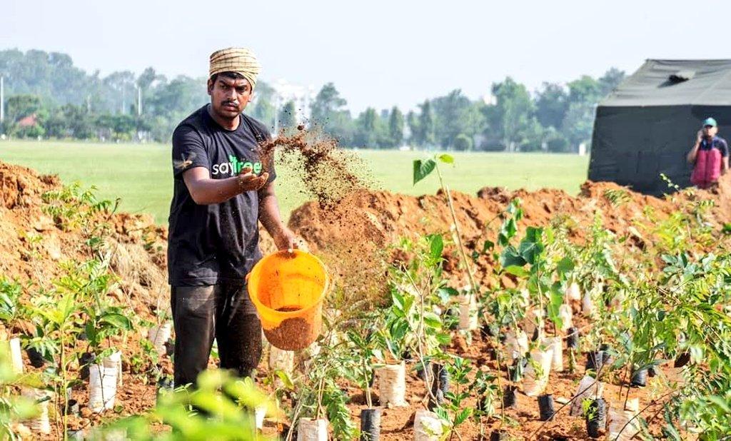 Nematodes Fertilizers